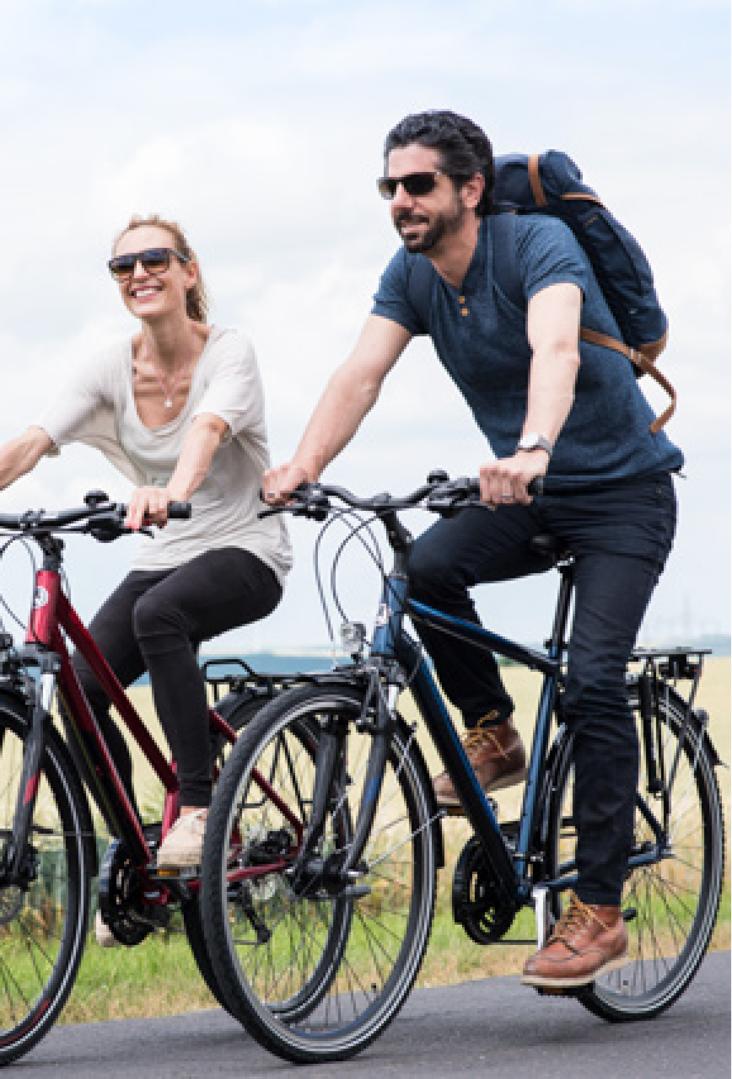 winora sinus i10 i500wh bosch elektro fahrrad 2019 online. Black Bedroom Furniture Sets. Home Design Ideas
