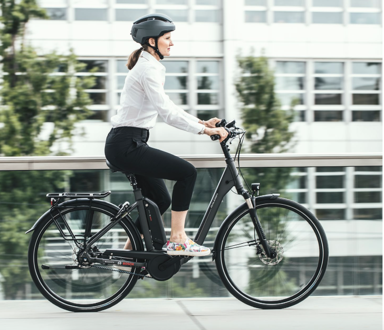 raleigh dover 8 hs 17 0 ah impulse elektro fahrrad 2019 online. Black Bedroom Furniture Sets. Home Design Ideas